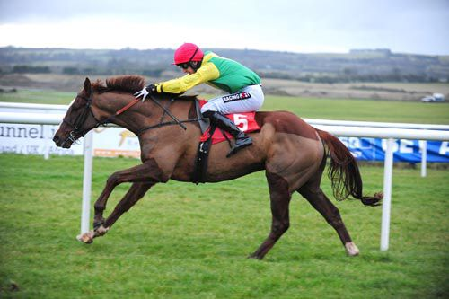 Sizing Tennessee striding clear at Punchestown