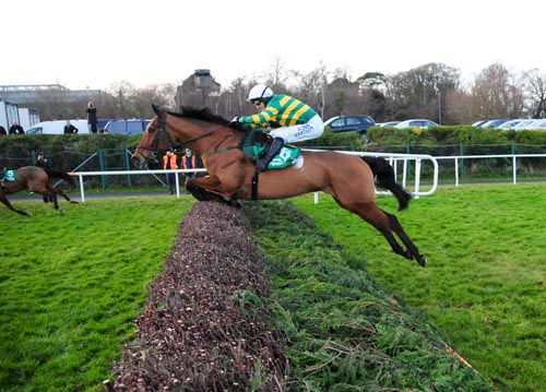 Colbert Station & Tony McCoy jump the last