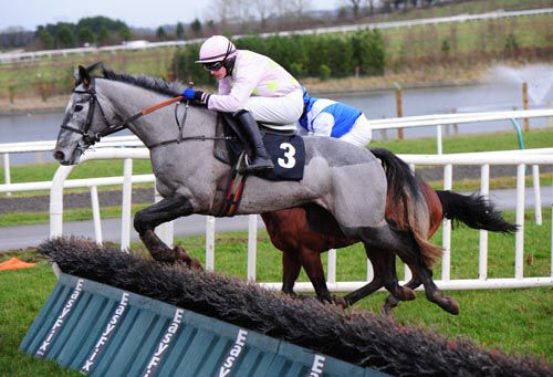 Dogora in action at Limerick