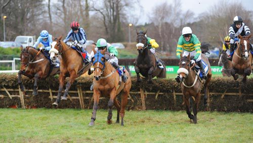 Flying Light in front at Leopardstown