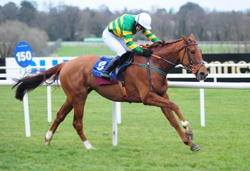 Tangled Web and Nin Carberry forge on at Leopardstown