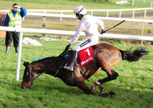 Fatcatinthehat and Ruby Walsh fall at the last with the race at their mercy