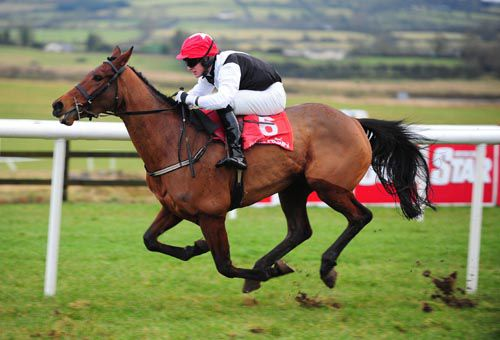 Our Pollyanna in full flight at Punchestown