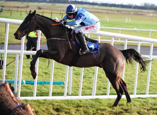 Wise Oscar jumps the last at Fairyhouse on New Year's Day