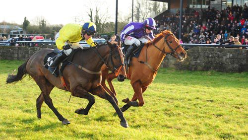 Pineau De Re (nearest) holds off Stony Grey Soil