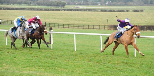 Grecian Tiger eventually held all challengers at Naas