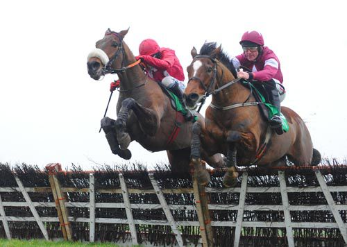 Cause Of Causes (left) and Midnight Game begin to slug it out at Navan