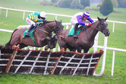 Blissful Moment (nearside) comes through at the last to 'do' Mr Cosmopolitan at Navan