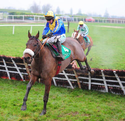 Barneys Honour has Chestnut Charlie beaten at Navan