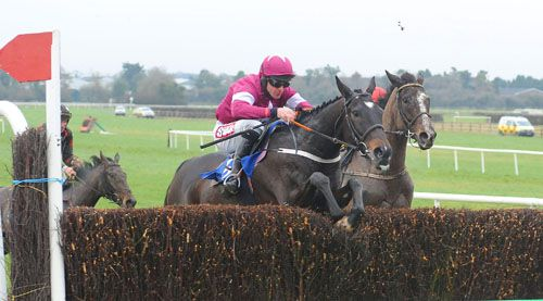 A quick jump at the last by Tofino Bay helped as he fought off Aupcharlie at Naas