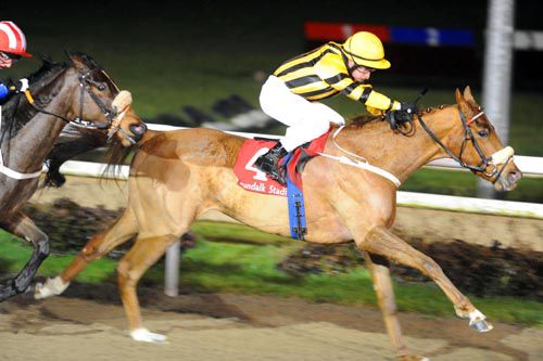 Senyuman came home strongly to beat Relay at Dundalk