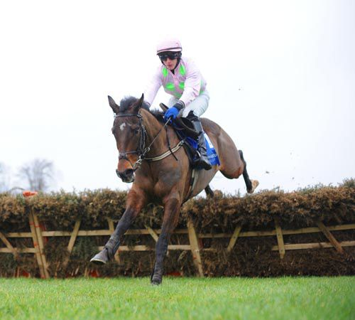 Fatcatinthehat won in style at Leopardstown