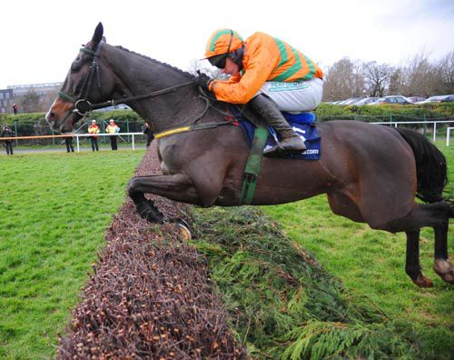 A neat jump from Texas Jack at Leopardstown