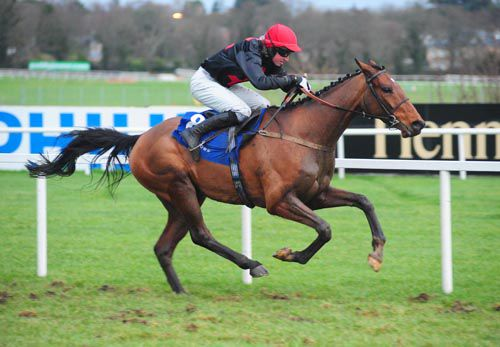 Le Vent D'Antan, with Mikey Fogarty up, sprints clear at Leopardstown
