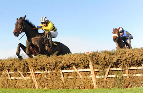 Glens Melody (Paul Townend) leads over the last