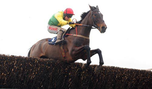 Sizing Europe (Andrew Lynch) clears the last to win the Tied Cottage Chase