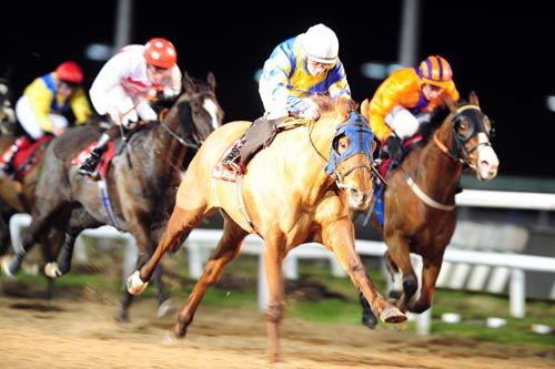 Denis Of Kerry comes home in front of Massabini (Joseph O'Brien got a 3 day whip ban) and Buccaneer Bob at Dundalk