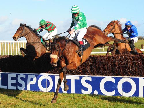 Ballinahow Lady jumps the last from Ros Brin and Flamingos Gold