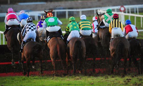 Space is at a premium as the runners negotiate a fence at Thurles.  Winner Letterlee Star (with disc)