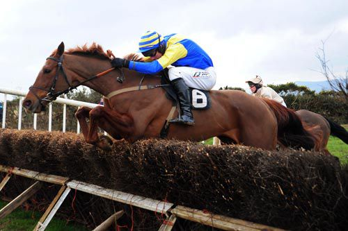 Most Chaste and Derek O'Connor on their way to success at Ballydarragh