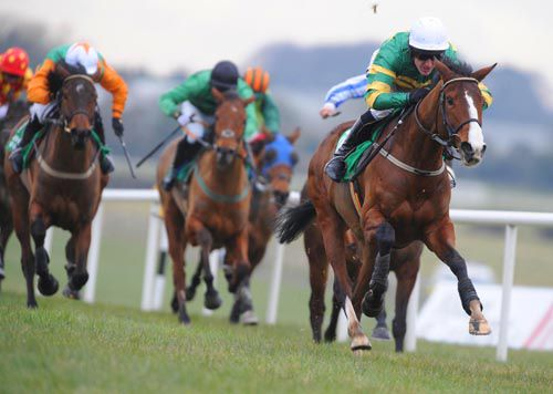 Upsie and Tony McCoy assert on the run-in