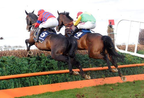 2013 Sprinter Sacre and Sizing Europe in unison at Punchestown