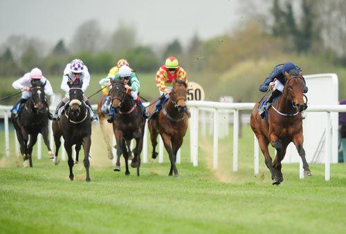 Coach House has his rivals well beaten at Tipperary