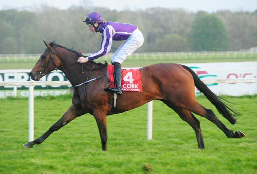 Say pictured winning her maiden at Cork