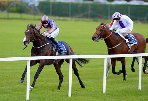 Battle Of Marengo & Joseph O'Brien on their way to victory from Loch Garman in second