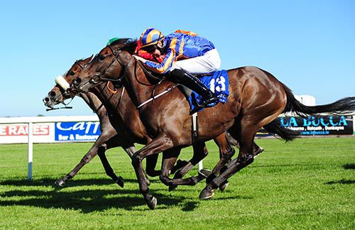 Wonderfully (nearside) just got up to beat Queen Of Power (grey nose) and Colour Blue (noseband) at Fairyhouse