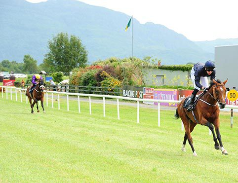 Royal Irish Hussar comes home a clear cut winner of the opener at Killarney