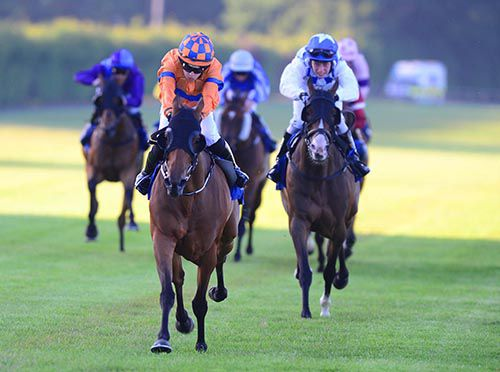 Fairylike, orange, forges clear at Leopardstown