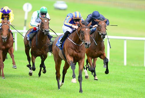 Great White Eagle is driven out close home by Joseph O'Brien