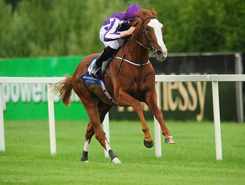 Friendship & Joseph O'Brien on their way to victory