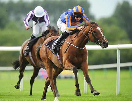 Indian Maharaja is pushed out by Joseph O'Brien