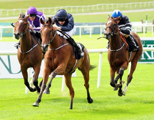Tapestry pricks her ears as she is driven out by Joseph O'Brien to win the Debutante Stakes