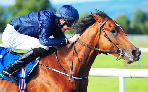 A fine shot of Orchestra and Joseph O'Brien on their way to victory