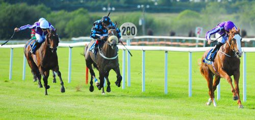Friendship and Joseph O'Brien storm clear in the Premier Nursery