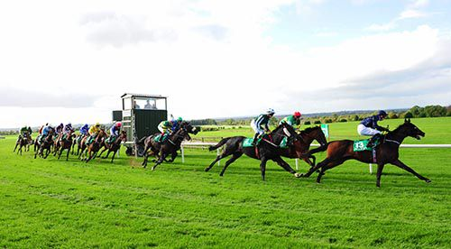 Sardinia (eventual winner) leads the field away from stands at Navan