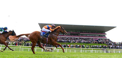 El Salvador and Joseph O'Brien race home in front of Cosmic Cannonball and Kevin Manning