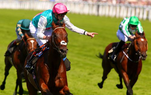 Qipco sussex stakes betting calculator goal betting