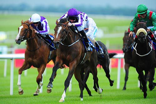 Words (purple cap) pictured on her way to victory at the Curragh last June
