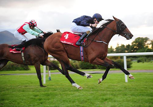 Red Rocks Point and Joseph O'Brien pictured on their way to victory