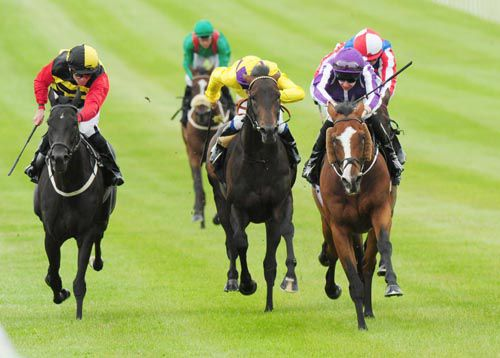 Leading Light winning at the Curragh