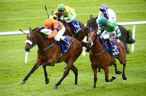 Best Kept Secret sees it out well under Ana O'Brien (orange and blue)