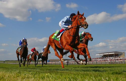 Foundation beating Deauville in the Royal Lodge Stakes