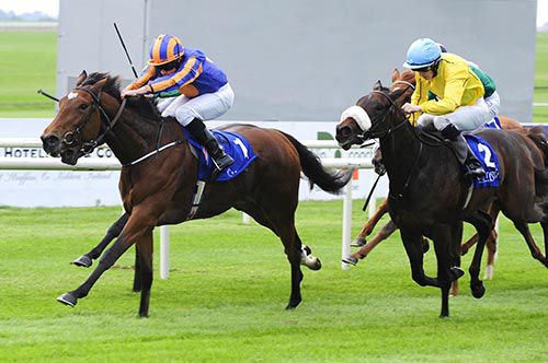 Best In The World is ridden out by Ryan Moore to beat Dolce Strega (noseband)