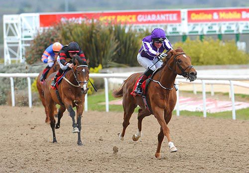 Housesofparliament pictured on his way to victory at Dundalk in April