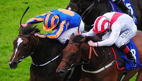 Roly Poly (left) and Seafront battle it out