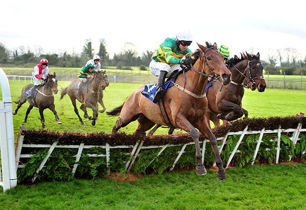 Image result for padraig roche trainer